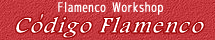 2013年6月開講 FlamencoWorkshop Codigo Flamenco